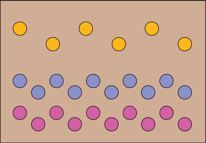 Cut Flower Garden Diagram