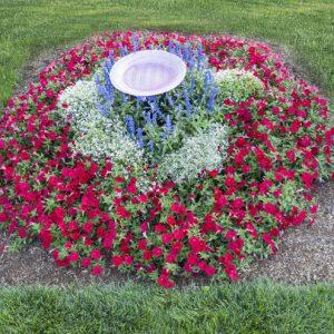 Patriotic Garden Photo